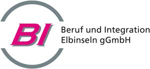 logo_bi-full300