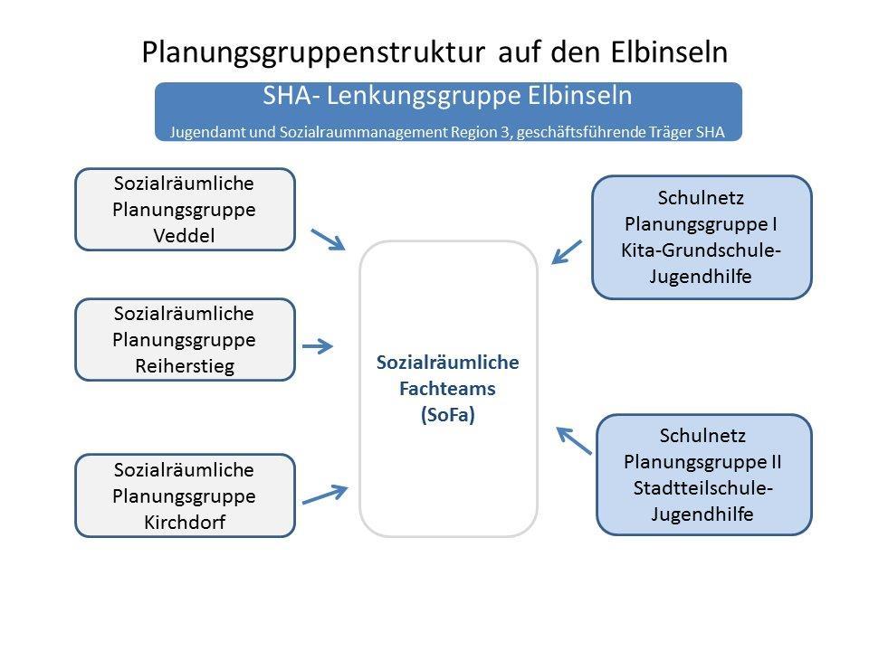 Schaubild Planungsgruppenstruktur
